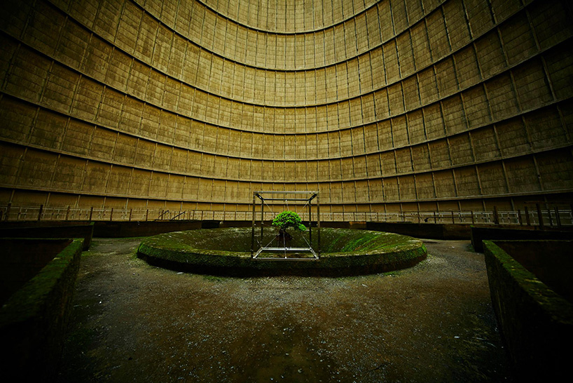 azuma-makoto-bonsai-abandoned-power-plant-designboom-04