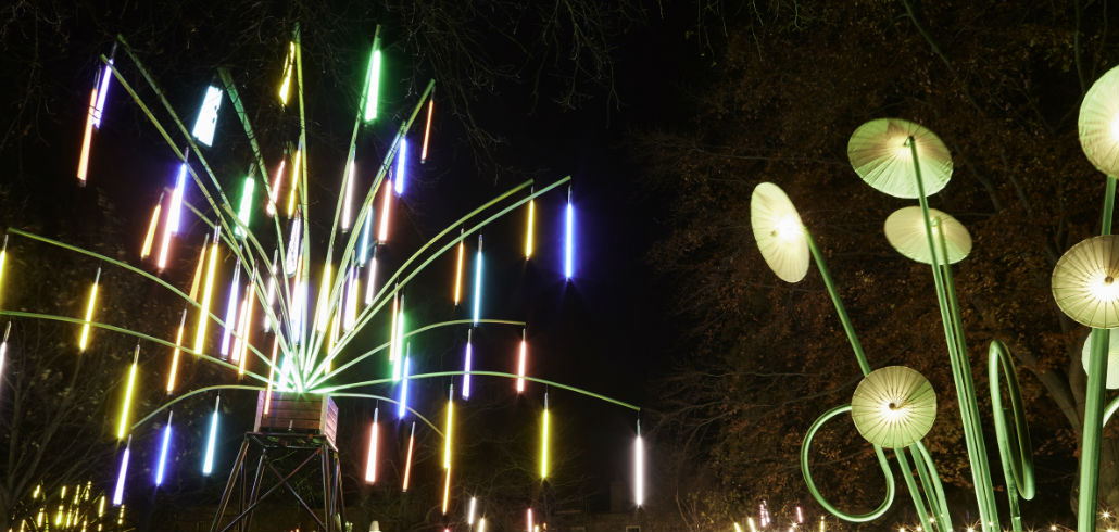 the garden of light shines during London's lumiere festival 2016