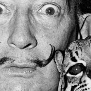 4-must-see-videos-dali-featured