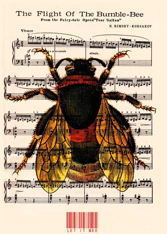 toaf-bee-orson-kartt