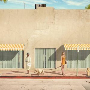 dean west's clean aesthetic recalls wes anderson