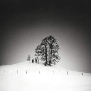 Family, a black and white landscape photograph by Saatchi Art artist Uwe Langmann