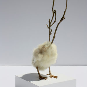 Dennis-Karley-Feaver-saatchi-art-taxidermy-wood-plastic-sculpture