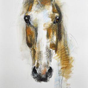 Alert-XIII-benedicte-gele-saatchi-art-chalk-drawing-horse