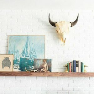 inspiration from eclectic home designed by Emily Henderson