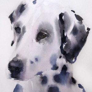 Dog-Dalmatian-2-Sylvia-Baldeva-saatchi-art-watercolor-canvas-painting