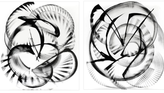 saatchi-art-thomas-hammer-monochromatic-pair