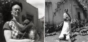 Frida Kahlo: On Animal & Mesoamerican Symbology